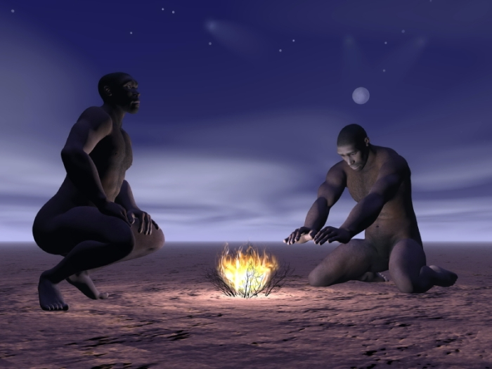 Homo Erectus and Fire