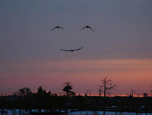 gods-smile